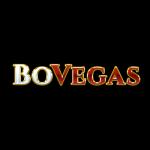 bovegas logo